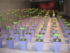 Robo-flowers